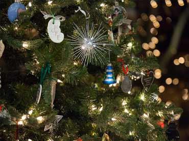 UNOS Tree of Life Celebration